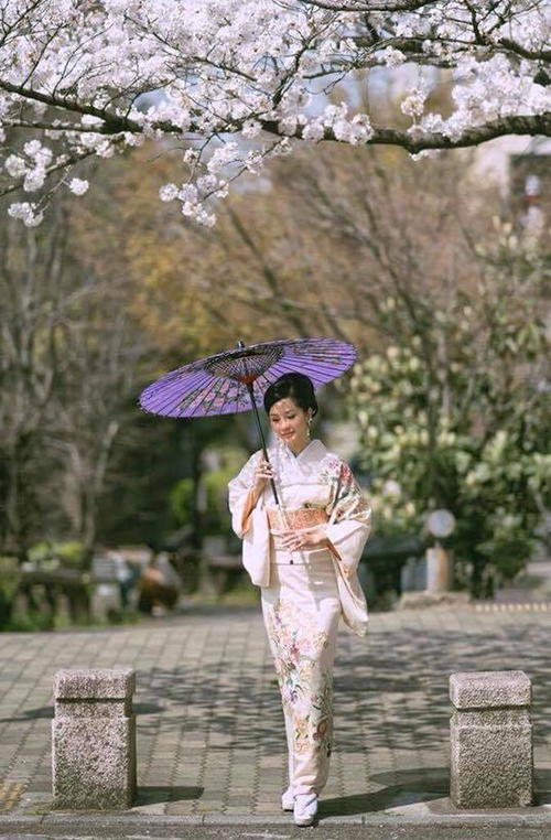 Hồng Nhung diện kimono, che ô đi dưới hàng cây anh đào đẹp ngây ngất.
