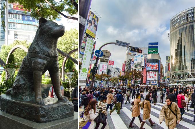 Giao lộ Shibuya là nơi bạn không thể bỏ qua trên hành trình tham quan Tokyo.