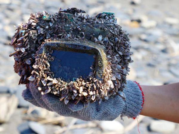 Chiếc hộp chống nước đựng máy ảnh bên trong bám đầy vỏ sò khi được tìm thấy.Ảnh: EPA