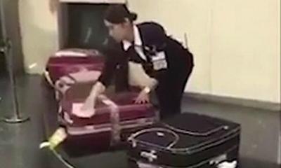 Nhân viên sân bay Nhật Bản lau vali cho hành khách trên băng chuyền