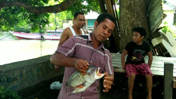Nhiều người đã kéo đến nhà Ahmad để xem con cá khi hay tin.