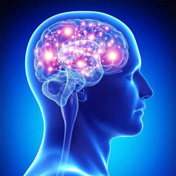 Giúp tăng cường hoạt động não Như một nghiên cứu cho thấy, các bài tập aerobic tác động thấp, như đi bộ, ngăn ngừa chứng sa sút trí tuệ sớm, giảm nguy cơ bệnh Alzheimer, và cải thiện sức khoẻ tâm thần tổng quát. Không phải đề cập đến giảm căng thẳng tinh thần và duy trì một mức độ endorphins cao hơn.