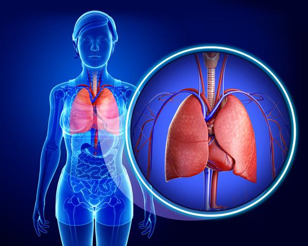 Tăng thể tích phổi Đi bộ giúp tăng lưu lượng oxy trong máu, loại bỏ chất độc hại trong phổi. Khi đi bộ, hệ hô hấp cũng hoạt động hiệu quả hơn giúp giảm một số bệnh lý về phổi.
