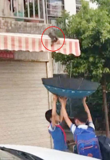 Hai học sinh trên đường đến trường đã dừng lại để cứu con mèo.