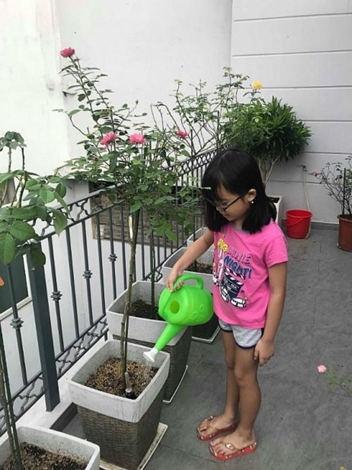 Khu vườnnhà chị Trang được trồng cách đây hai năm; gồm nhiều gốc hồng ngoại, được bố trị ở ban công tầng hai của căn biệt thự tại quận 5, TP HCM. Bà mẹ 35 tuổi tiết lộ đây là món quà đặc biệt chị dành riêng cho hai cô con gái.
