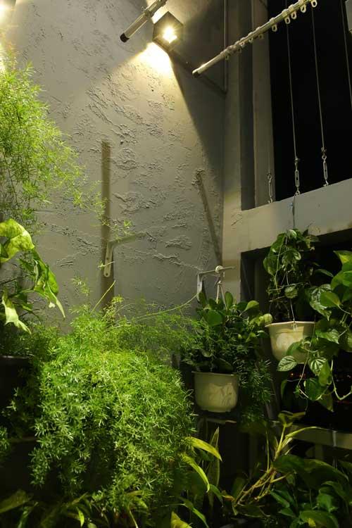 Một góc hành lang có nhiều cây xanh là nơi Nhàn thỏa mãn niềm đam mê trồng trọt, sống gần với thiên nhiên của mình.