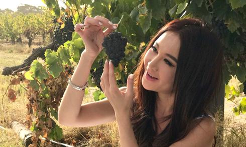 'Bông hồng lửa' Ôn Bích Hà khoe trang trại rượu nho rộng lớn ở Australia