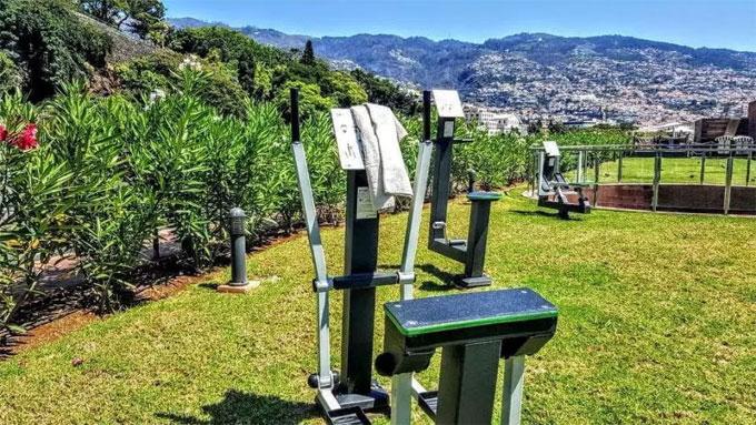 Khu vườn thơ mộng ở biệt thự riêng cũng được lắp các máy rèn cơ tay và chân.