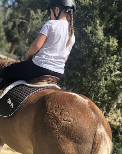 Hình vương miện ở mông chú ngựa Harper đang cưỡi gây