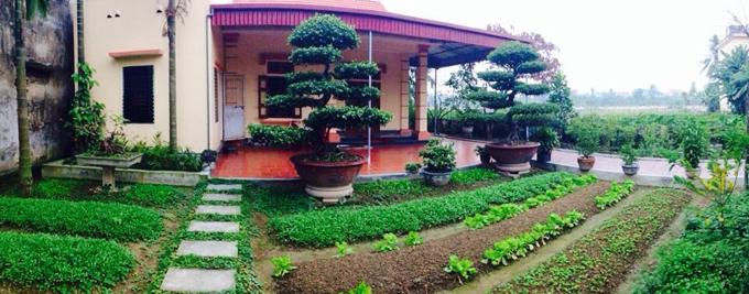 Chị Sinh bắt đầu làm đất và gieo trồng cách đây gần hai tháng. Để tôn tạo khu vườn, chị Sinh mua khoảng 90 khối đất phù sa và thuê người san phẳng
