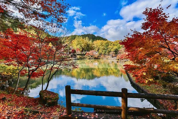 Hành trình nước Nhật trong 14 ngày khiến ai xem cũng muốn lên đường