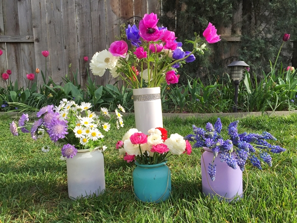 Vào mùa hoa nở, chịJacqueline thường chọn những bông đẹp nhất bó lại để con mang tặng cô giáo và bạn bè.