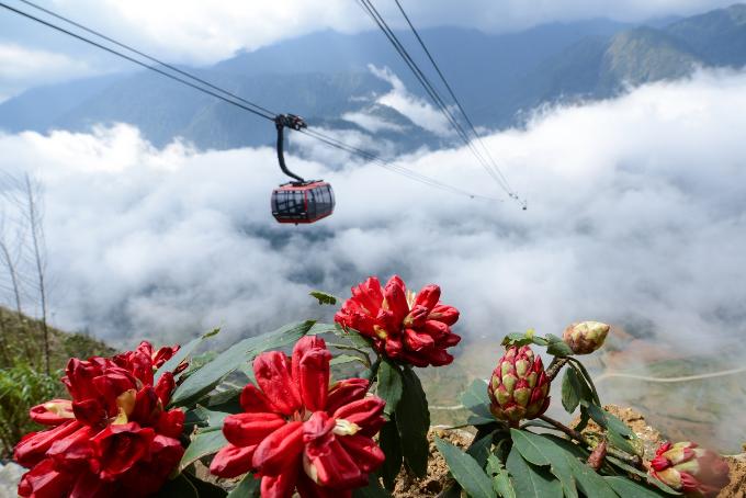 Rời khỏi ga Mường Hoa, du khách sẽ di chuyển bằng cáp treo để lên tới đỉnh Fansipan. Thời gian di chuyển khoảng 15 phút. Tuyến cáp treo sẽ cho du khách một trải nghiệm thú vị khi ngắm nhìn núi rừng hùng vĩ từ trên cao.