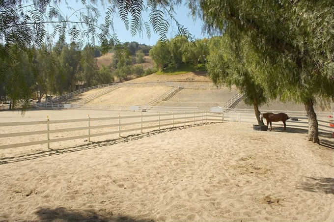 Miley có niềm đam mê cưỡi ngựa từ bé.