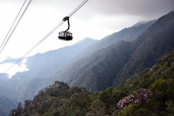 Tới đây, khi băng qua dãy Hoàng Liên Sơn bằng cáp treo, du khách sẽ được ngắm rừng hoa đỗ quyên khoe sắc trong những khoảng rừng xanh thẫm.