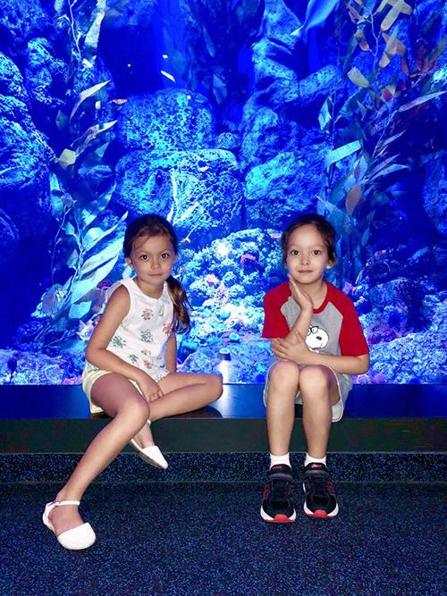 Tôm và Tép được mẹ dắt đi chơi công viên thuỷ cung ở Singapore.