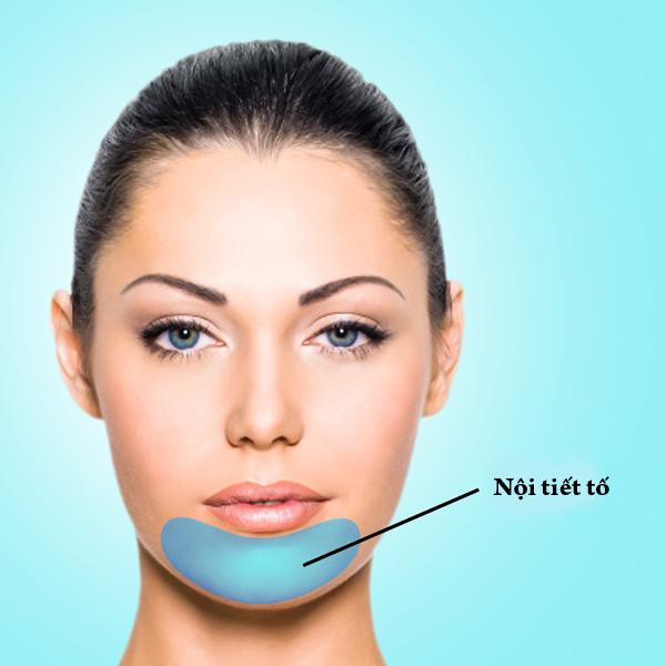 Mụn ở hàm, cằm liên quan trực tiếp đến nội tiết tố trong cơ thể. Tình trạng mụn ở khu vực này thường xuất hiện vào khoảng 7 - 10 ngày trước chu kỳ kinh nguyệt ở phụ nữ.