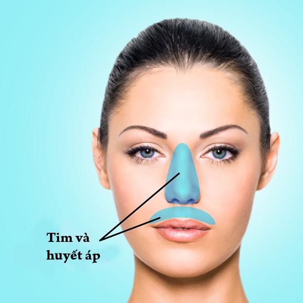 Mụn ở sống mũi và môi trên cảnh báo các vấn đề về tim mạch và huyết áp. Ăn quá nhiều thức ăn cay, mặn cũng gây ra mụn ở vùng da này.