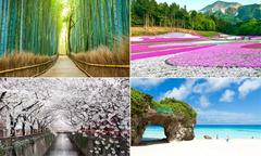20 cảnh đẹp lý giải vì sao Nhật Bản luôn hút du khách