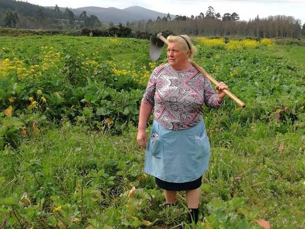 Bà Dolores đứng giữa ruộng khoai tây hồi tuần trước. Ảnh: AP