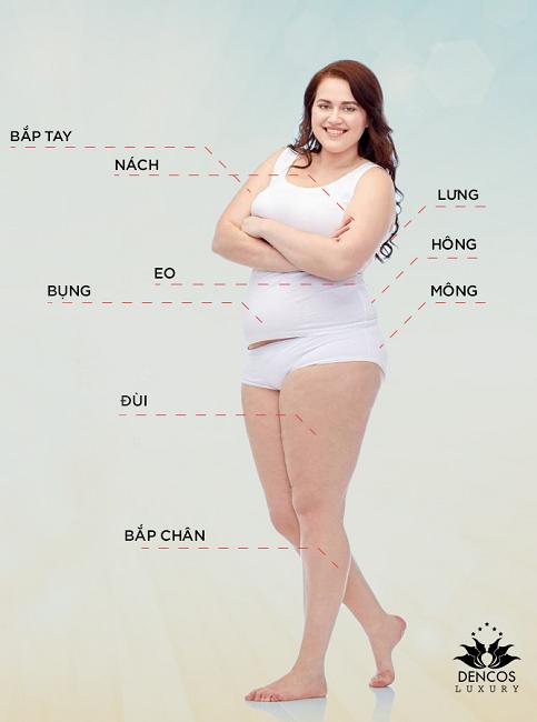Chín vùng thường xuyên bị tích mỡ nhiều nhất trên cơ thể.