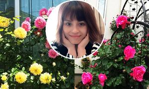 Vườn hoa hồng hâm nóng tình yêu của cặp vợ chồng Việt tại Nhật