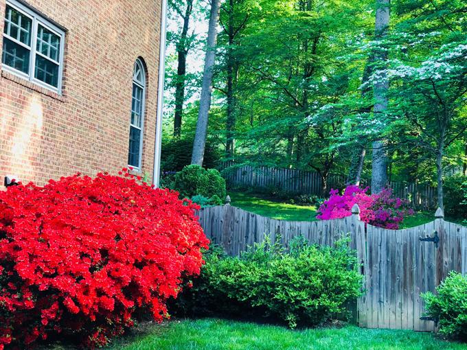 Theo chồng sang Mỹ định cư nhiều năm, sau những giờ đi làm, cựu người mẫu Bằng Lăng dành toàn bộ thời gian để chăm sóc cho tổ ấm nhỏ của mình. Cô thích nấu nướng, trang trí nhà cửa và đặc biệt là làm vườn. Bằng Lăng nói rằng: Thời gian của tôi ở ngoài vườn là nhiều nhất, đặc biệt khi vào mùa xuân, hè và mùa thu lúc trời không lạnh lắm. Tôi thích yên tĩnh vàngắm vườn hoa của mình hoặc đọc sách, nghe nhạc, tâm sự với con.