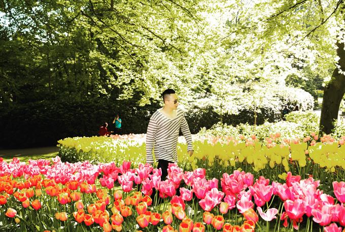 Anh cảm thấy khá may mắn khi vẫn kịp ngắm hoa tulip nở trong những ngày đầu hè.