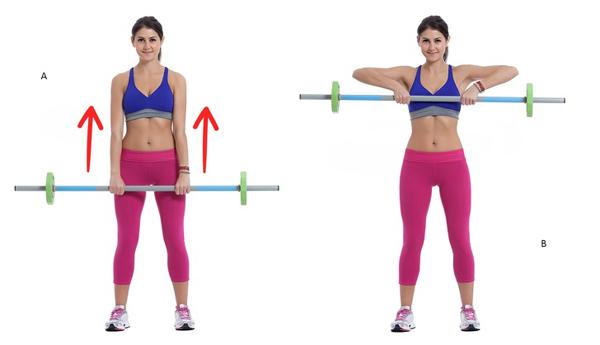 Đứng thẳng, chân mở rộng bằng một vai, hai tay cầm tạ ngang vừa sức, nâng lên cao ngang ngực 20 lần.