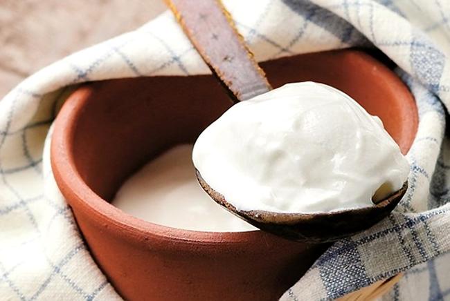 Bạn có biết nguồn gốc thật sự của sữa chua?