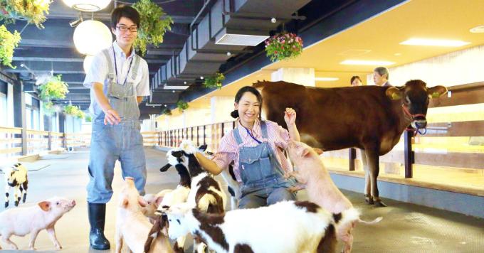 Hãng nhân sự lớn thứ hai Nhật bản nuôi động vật tại trụ sở để thu hút quan tâm đến nghề nông. Ảnh:CNBC.