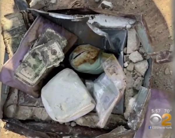 Cặp đôi tìm thấy kho báu chứa tiền, vàng, kim cương khi trồng cây ở sân sau