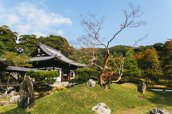 Đền Kodaji ở phía ĐôngKyoto. Thành phố này không có nhiều khu vui chơi hiện đại nhưng lại sở hữu số lượng di tích lịch sử, danh lam thắng cảnh nhiều bậc nhất Nhật Bản. Bạn có thể dành ra ít nhất 2-3 ngày để khám phá nơi đây.