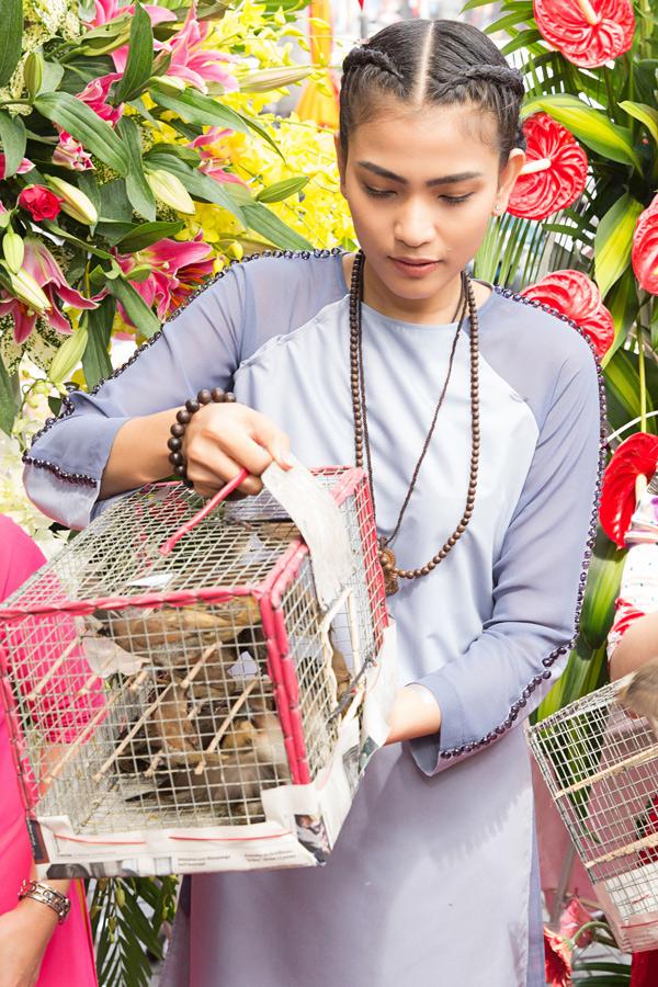Nhân mùa lễ Phật đản, ban tổ chức chương trình mời Trương Thị May và các vị khách thực hiện nghi thức phóng sinh, thả chim về trời.