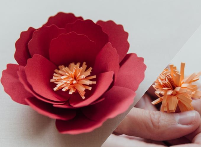 Bước 12&13:Cuốn lại thành nhị hoa. Có thể phết keo vào giấy trước khi cuốn hoặc cố định cuống nhị bằng băng keo.Gắn nhị vào hoa bằng keo nóng.