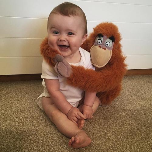 Nụ cười khoái chí của Harry khi chụp ảnh cùng chú khỉ đột.