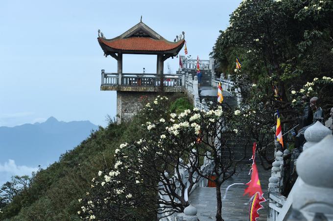 Suốt dọc đường La Hán lên khu tâm linh, đỗ quyên nở vàng, không gian thanh khiết.