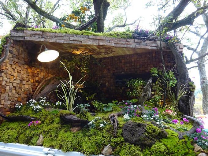Nghệ nhân đã lắp cả hệ thống đèn chiếu sáng để tăng thẩm mỹ cho khu vườn.