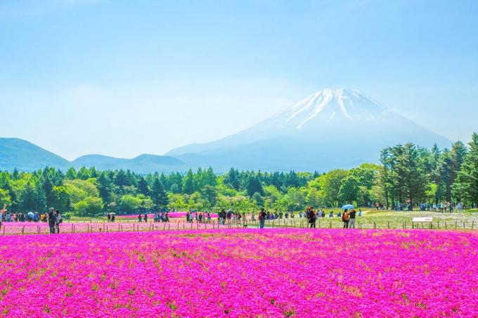 6 điểm ngắm núi Phú Sĩ - 3