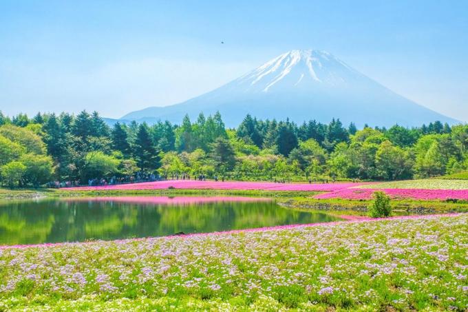 6 điểm ngắm núi Phú Sĩ - 2