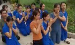 Nghệ An xác minh video quay nữ giáo viên quỳ trước cán bộ