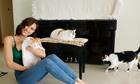Phương Mai nuôi 7 con mèo trong căn chung cư đi thuê