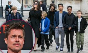 Brad Pitt phản đối cho các con đóng phim 'Tiên hắc ám 2' cùng mẹ