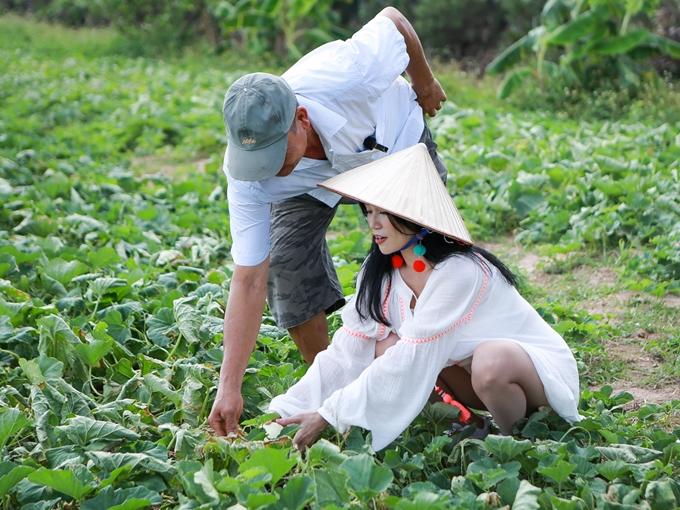 Sĩ Thanh nhẹ nhàng với từng quả dưa trong ruộng theo sữ hướng dẫn của người dân.