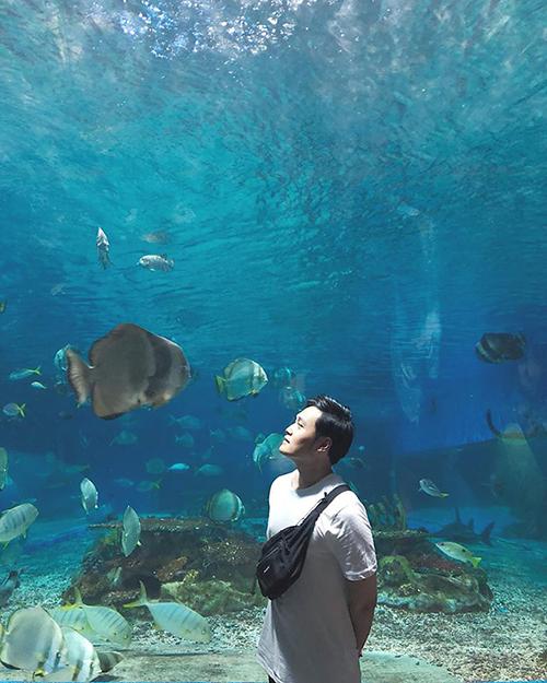 Quang Vinh dạo bước dưới thuỷ cung khổng lồ ở Maldives.