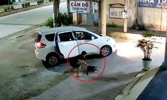 Thanh niên đi ôtô bắt trộm chó ở Tây Ninh