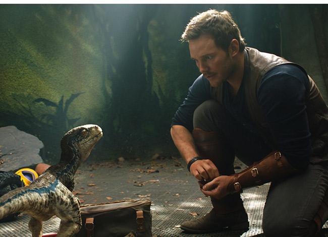 Chris Pratt đảm nhận vai chàng huấn luyện viên khủng long quyến rũ, mạnh mẽ trong Jurassic World. Ảnh: CNBC.