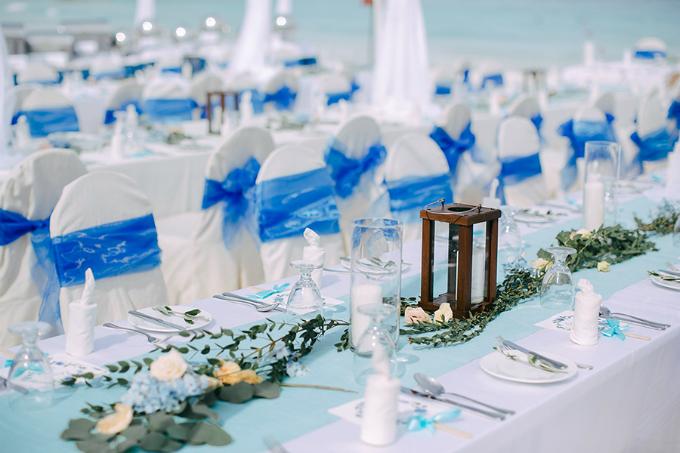 Những chiếc ghế được khoác lên mình dải lụa xanh biển. Tất cả bàn tiệc đều được trang trí bởi hoa hồng và cẩm tú cầu tươi.