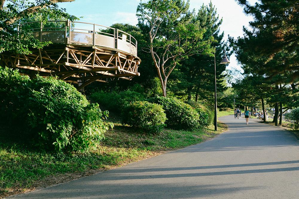 Bãi biển bình yên \'nhắm mắt thấy mùa hè\' ở Tokyo