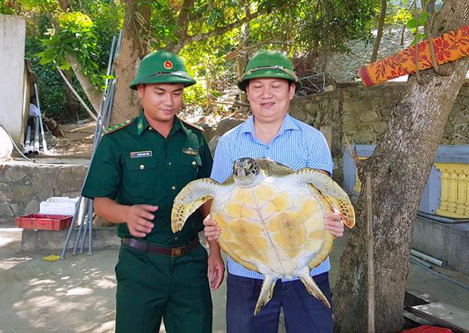 Con rùa nặng 40 kg, dưới bụng màu vàng. Ảnh: Hùng Lê